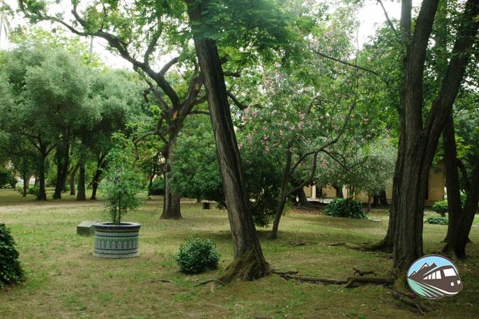 Parque de Las Acacias - Algeciras