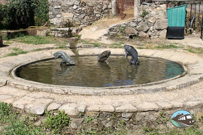 Estanque de peces - Villanueva del Conde