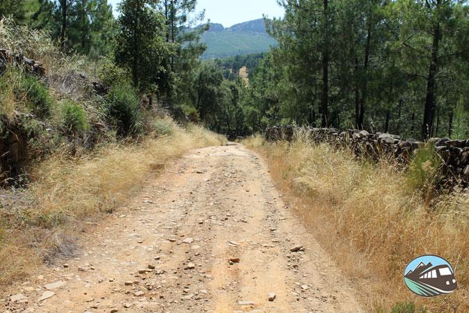 Camino dólmenes – Valencia de Alcántara