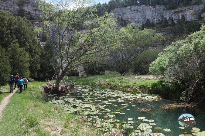 Río con nenúfares – Cañón del río Lobos