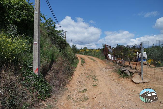 Ruta de Sotoserrano a Cepeda