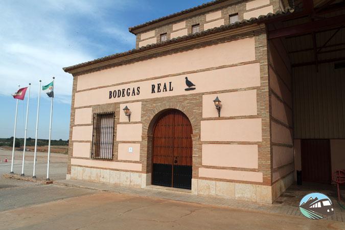 Bodegas Real - Ruta del Vino de Valdep