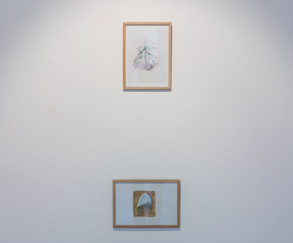 two small watercolour artworks in exhibition. plant and garden cottage roof from above