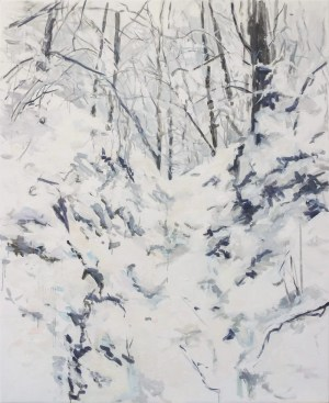 snowy winter white forest landscape