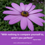 With nothing to compare yourself to, aren't you perfect - Brene Brown