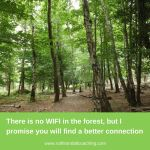 There is no wifi in the forest, but I promise you'll find a better connection