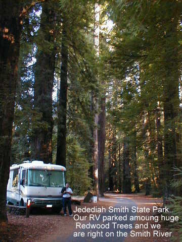 camping,jedediah,smith state park,redwoods