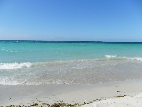 beach-103084_1280