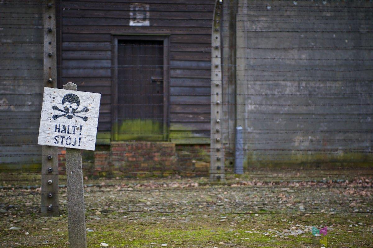 Auschwitz-Birkenau-RCH_1398