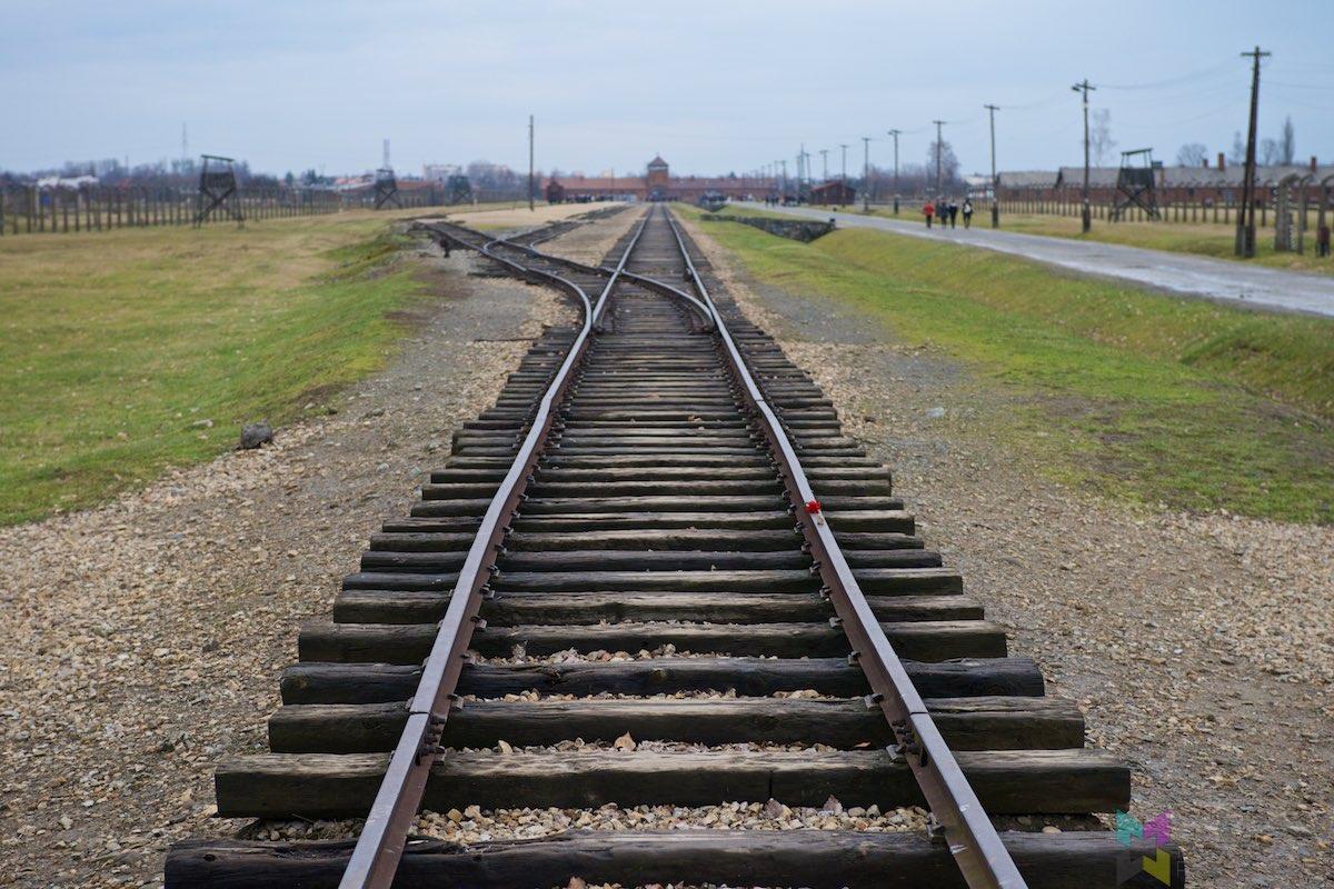 Auschwitz-Birkenau-RCH_1437