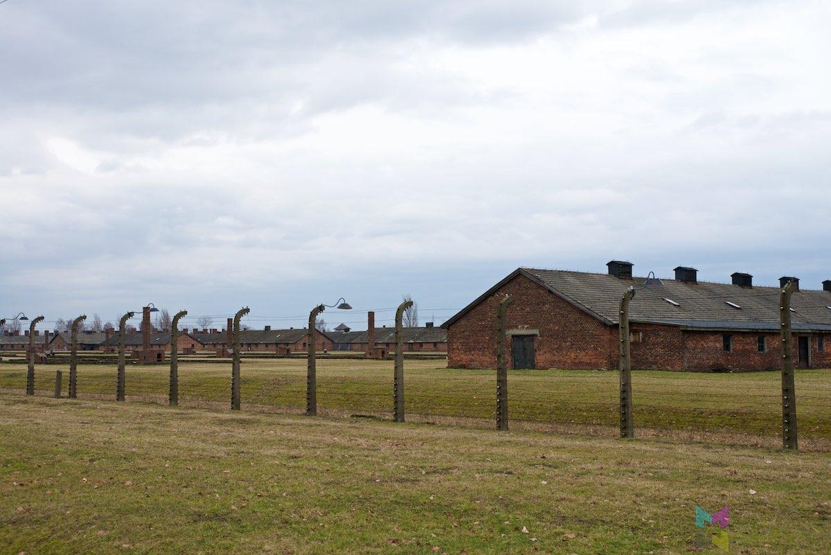 Auschwitz-Birkenau-RCH_1439