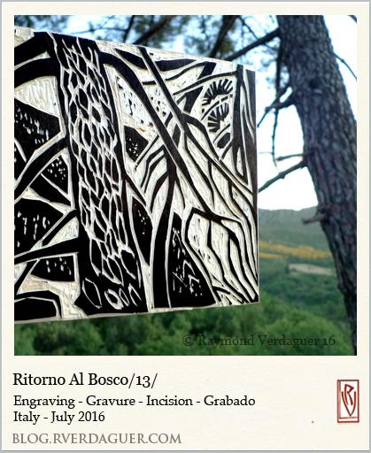 rvwit16casal-Rbosco13
