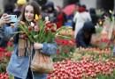 Kleurrijke start tulpenseizoen
