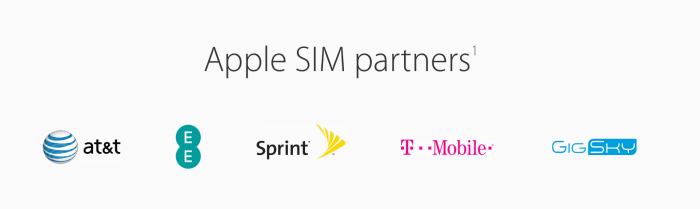 Apple SIM Partners