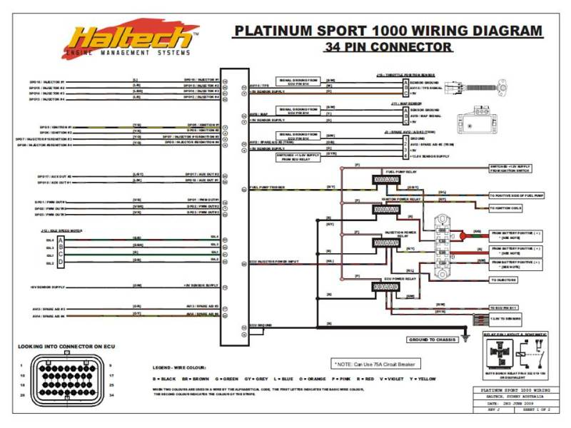 722096d1502131792 problems starting car new platinum 1000 help slide1 haltech e6k wiring diagram diagram wiring diagrams for diy car autronic cdi 500r wiring diagram at crackthecode.co
