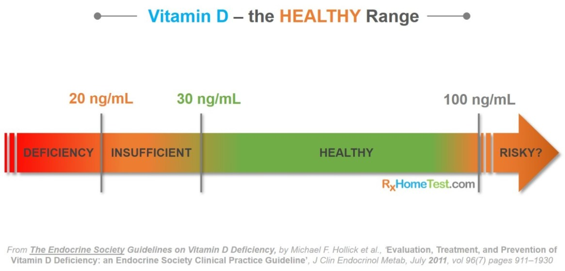 Healthy levels of Vitamin D