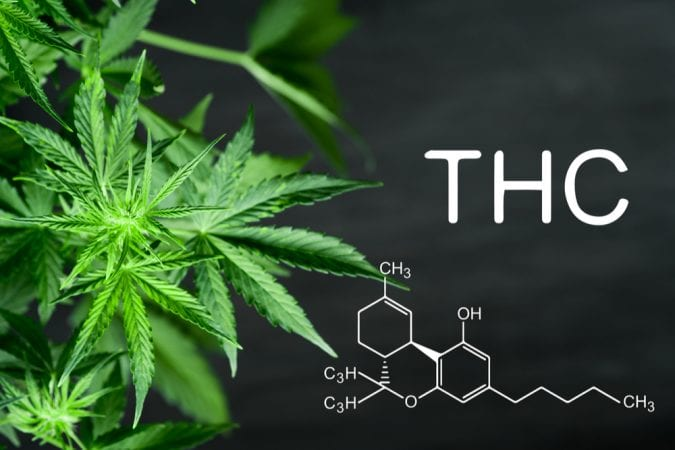 THC chemical structure next to a plant