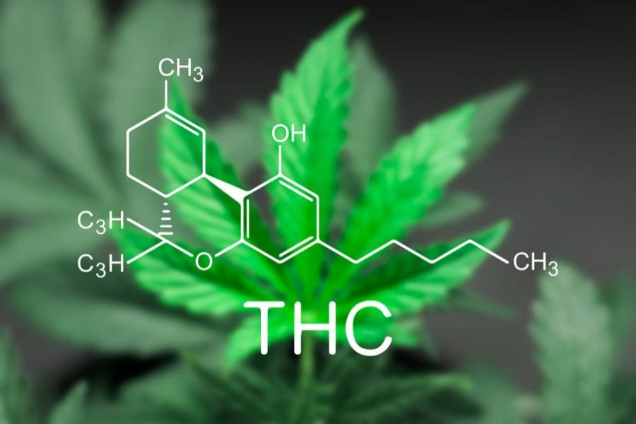 THC chemical structure over cannabis leaf, pain treatment