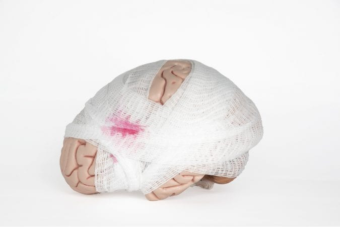 Gauze Wrapped Brain