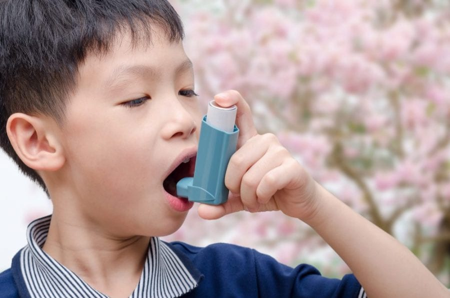 cannabis, inhaler, lung disease, asthma, medical cannabis, cannabinoids, THC, CBD, endocannabinoid system