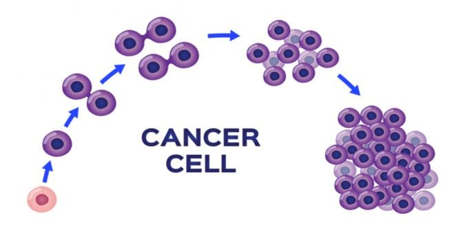 Cancer cell growth