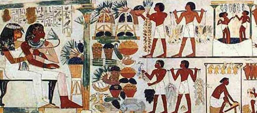 cannabis, seed preservation, Egypt, cannabis strains, landrace, landrace strains, cannabis breeding, genetics, cannabis seeds, cannabis farming