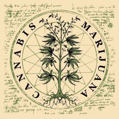 is the word marijuana racist represented by diagram of the plant labelled as marijuana and cannabis