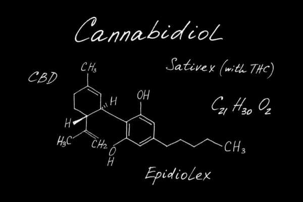 cannabis, CBD, THC, cannabinoids, medical cannabis, recreational cannabis, epidiolex, epilepsy, Big Pharma, pharmaceuticals, opioids