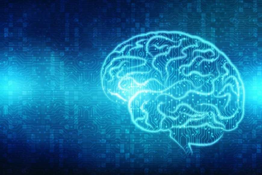 cannabis, medical cannabis, brain circuits, recreational cannabis, CBD, THC, cannabinoids, endocannabinoid system, nerves, research
