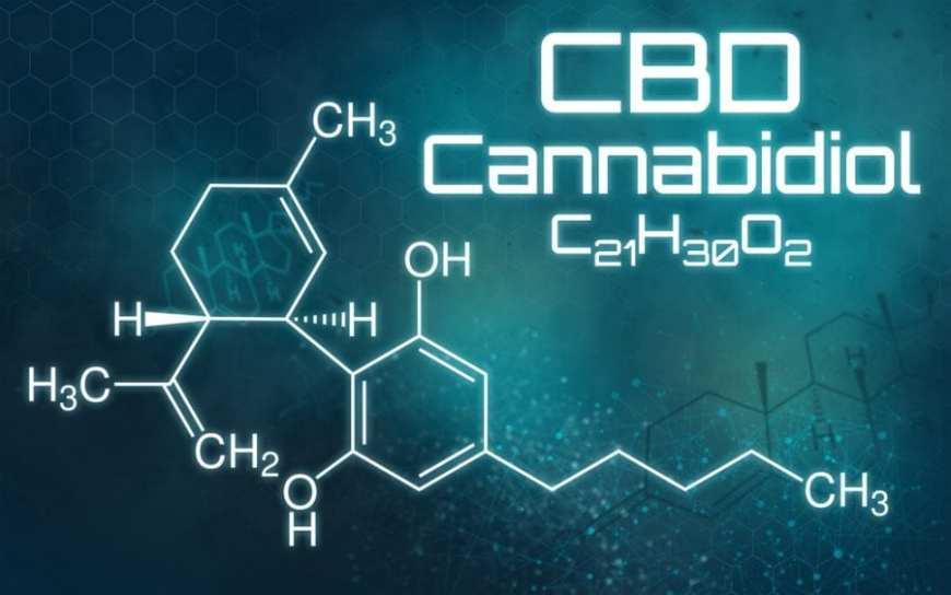 cannabis, THC, cannabinoids, endocannabinoid system, neurotransmitters, brains, neurons, legalization, medical cannabis