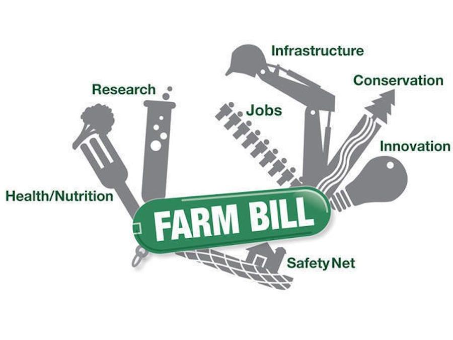 cannabis, Farm Bill, hemp, USA, legalization, prohibition, federal laws, state laws, medical cannabis, recreational cannabis, prohibition