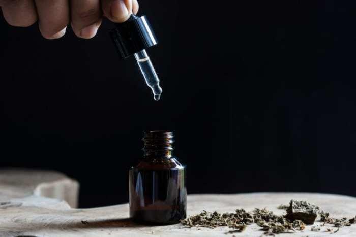cannabis, CBD, medical cannabis, treatment, rehabilitation, meth, addiction, substance use disorder, endocannabinoid system, dose