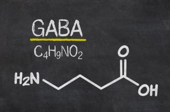 GABA for the GABA receptor written in chalk