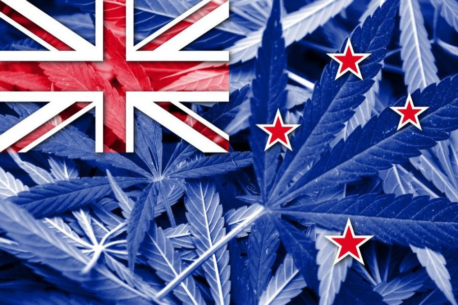 Jacinda Ardern, New Zealand, cannabis, is weed legal in New Zealand, medical cannabis, recreational cannabis, legalization, prohibition, general election, vote
