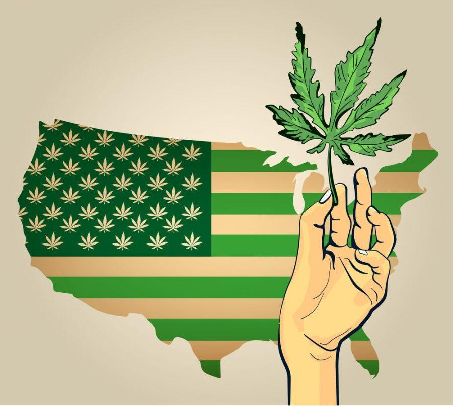 Amsterdam, USA legalization, federal legalization, cannabis, prohibition, medical cannabis, recreational cannabis, USA