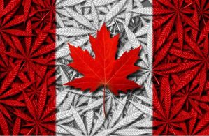weed in Canada, edibles, cannabis-infused, legal, legalization, recreational, adult use, cannabis, medical cannabis
