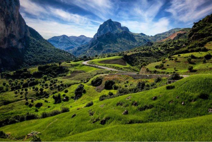 Rif Mountains, cannabis, medical cannabis, recreational cannabis, hash, bubble hash, Morocco, terpenes, trichomes