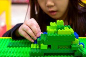 hemp lego bricks