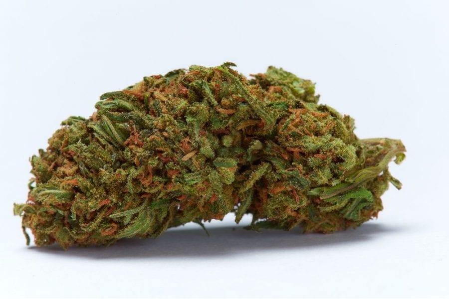 energizing strains, chemovar, durban poison, sour diesel, terpenes, limonene, pinene, mood, lower anxiety