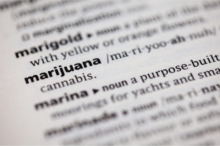carijuana entry in dictionary