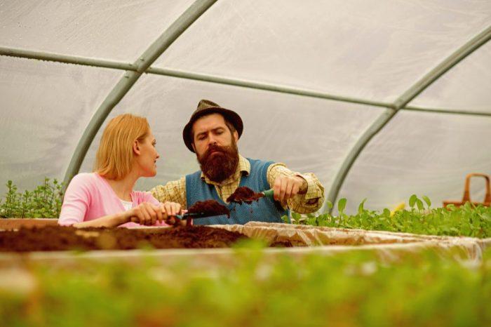 couple happily gardening