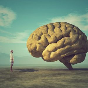 bivalent THC brain