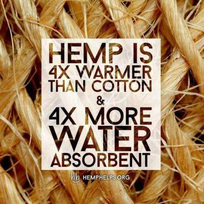 hemp versus cotton, cotton versus hemp, hemp