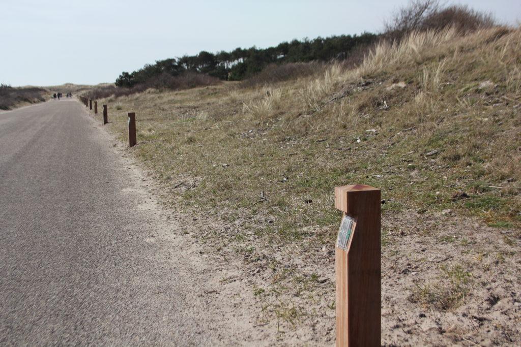 Sint Maartenszee – Weg Verlichting