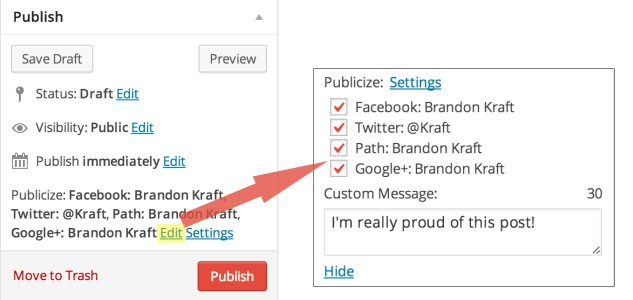 publish-meta-publicize