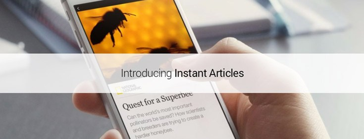 "How to fix the ""No rules defined for... in the context of InstantArticle"" errors in Facebook Instant Articles Wordpress Plugin"