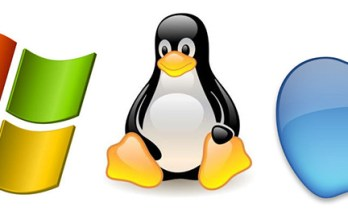 A Guide to Choosing the Right OS for Your Business