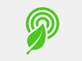 rainforest_featured