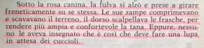 Gianni Padoan - Il Branco Della Rosa Canina - pag. 235
