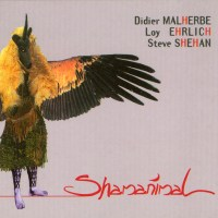 Didier MALHERBE / Loy EHRLICH / Steve SHEHAN (HADOUK TRIO) - Shamanimal